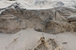 Cliffs of Sand | © Patricia Crisafulli