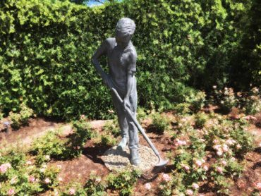 Of Gardening and Memory | Essay By Tom Lagasse